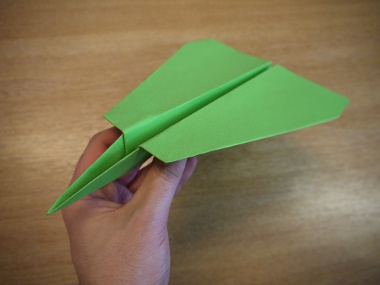 How to make a paper aeroplane: The Lion
