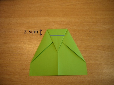 How to make a paper aeroplane: The Lion 6